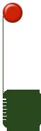 Anyagcsere típus mérés