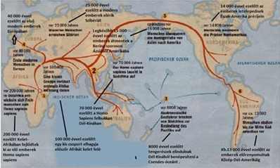földrajzi-zónák-és-táplálék