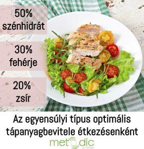 Az egyensúlyi típus optimális tápanyagbevitele étkezésenként